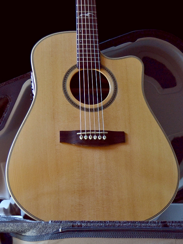 Seagull Artist Studio acoustic-electric