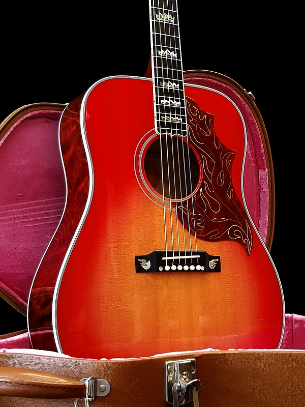 Gibson Firebird Custom-Acoustic - limited edition